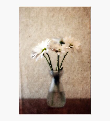 Small Vase of Daisies Photographic Print