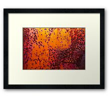 Sunset - Rust And Metal Series Framed Print
