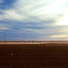 Farming by Toucan79