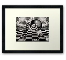 Fly Byes Framed Print