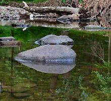 River mirror  by sabranieto