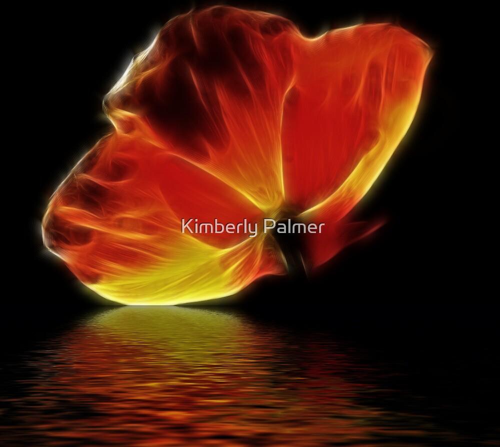 Burst of Poppy by Kimberly Palmer