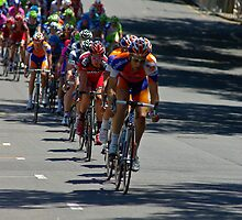 The Peleton coming down Pennington Terrace, Stage 6, City Circuit, Tour Down Under 2012 by Steven Weeks