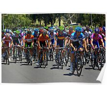 The Peleton climbing Montefiore Hill, Stage 6, City Circuit, Tour Down Under 2012 Poster