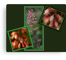 Beauty in the little things............ Canvas Print