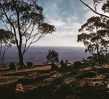 Way to cross on Mount Macedon 1959 05120021 by Fred Mitchell