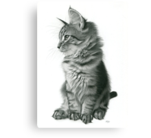 Whistful 2 Canvas Print