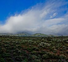 Western Skies with Clouds by Tabitha  Smith