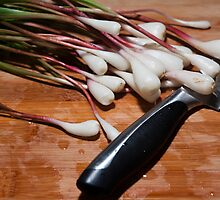 Ramps by jimmy986