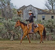 Cowboys by Tabitha  Smith