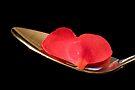 Spoonful of Love by Adam Bykowski