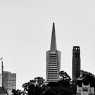 Transamerica Pyramid by ZWC Photography