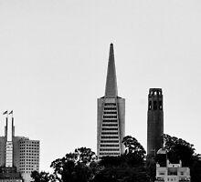 Transamerica Pyramid by ZWC Photography
