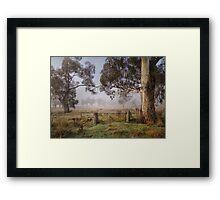 Winter in the Riverina Framed Print