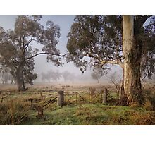 Winter in the Riverina Photographic Print