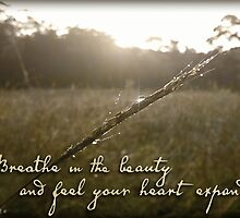 Breathe in the Beauty by Melanie Moor
