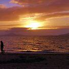 Cardwell Beach Sunrise by Sue Downey