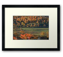 Train in Autumn Framed Print