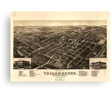 Panoramic Maps View of the city of Tallahassee State capital of Florida county seat of Leon county 1885 Canvas Print