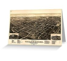Panoramic Maps View of the city of Tallahassee State capital of Florida county seat of Leon county 1885 Greeting Card