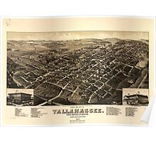 Panoramic Maps View of the city of Tallahassee State capital of Florida county seat of Leon county 1885 Poster