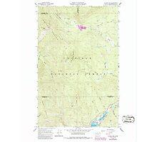 USGS Topo Map Washington State WA Aladdin Mtn 239768 1967 24000 Photographic Print