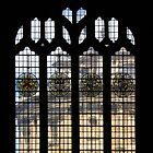 Bodleian Library, Oxford by KUJO-Photo