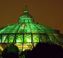 Royal Glasshouse, Brussels by KUJO-Photo