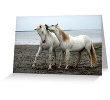 White Horses 2 Greeting Card