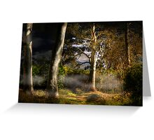 Ghost Gums by Moonlight - Hahndorf, The Adelaide Hills, SA Greeting Card