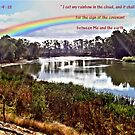 The Rainbow - Covenant - Genesis 9:13 by judygal