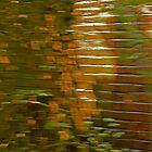 Bricks on the Run by Lynn Gedeon