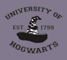 University Of Hogwarts by stevebluey