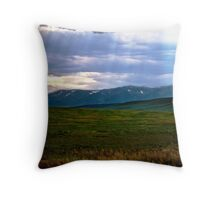 Light Washing Down Throw Pillow
