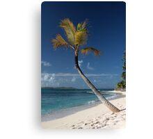 Beach View, Palm Island, Grenadines. Canvas Print
