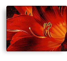 Blood-red Flowers Canvas Print