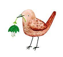 Bird & Flower Photographic Print