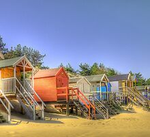 Beach Huts and Pine Trees by Chris Thaxter
