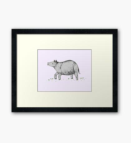 Rhino Calf Framed Print