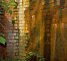 Slick Brick Wall by Lynn Gedeon
