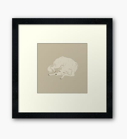 White Dog Sleeping Framed Print