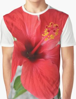 A Stunning Scarlet Hibiscus Tropical Flower Graphic T-Shirt
