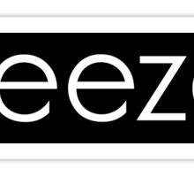 weezer box logo  Sticker