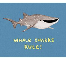 Whale Sharks Rule! Photographic Print