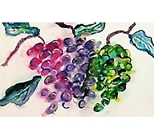 Bunches of Grapes, watercolor Photographic Print