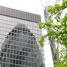 Reflections of a Gherkin by PhotogeniquE IPA