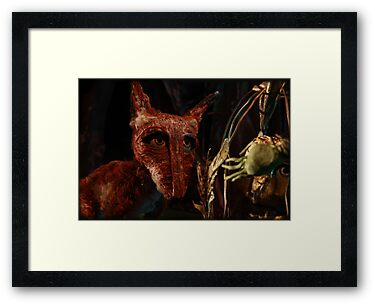 The fox by Cat Bruce