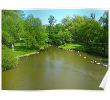 Green ponds on Spring days Poster