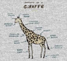 Anatomy of a Giraffe Kids Tee