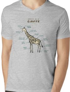 Anatomy of a Giraffe Mens V-Neck T-Shirt
